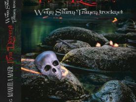 Ilya Duvent - Wenn Sturm Tränen trocknet